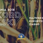 Razem dla Rekordów Polski - bijemy oficjalny rekord w plonie ziarna!