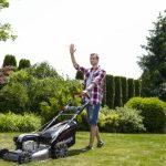 Zakładanie i pielęgnacja trawnika w sierpniu